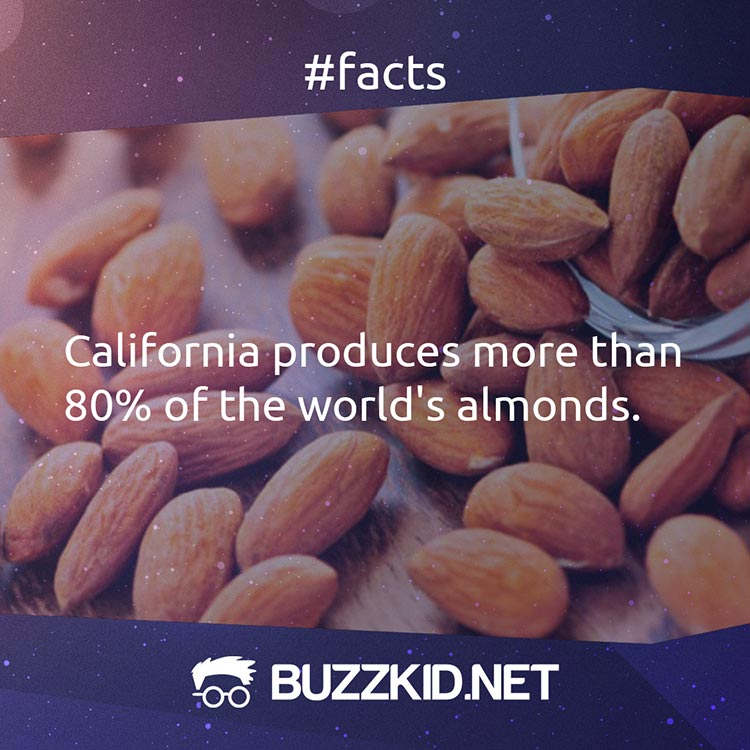 California is the largest almond producer